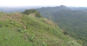 绿色领域鸟瞰图在泰国 影视素材