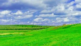 绿色领域,草甸风景有草的纽约上州 库存图片