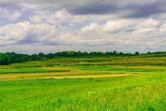 绿色领域,草甸风景有草的纽约上州 免版税库存照片