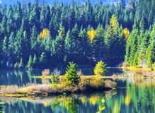 绿色黄色海岛反射Gold湖秋天Snoqualme通行证W 免版税图库摄影