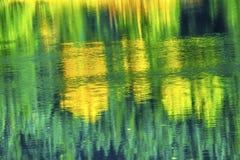 绿色黄色秋天反射摘要Gold湖Snoqualme通行证 库存照片