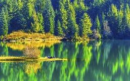 绿色黄色秋天反射Gold湖Snoqualme通行证华盛顿 库存照片