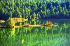 绿色黄色秋天反射Gold湖Snoqualme通行证华盛顿 免版税库存图片