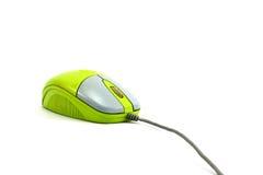 绿色鼠标 免版税库存照片