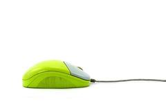 绿色鼠标 免版税库存图片