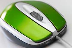 绿色鼠标 库存图片
