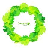 绿色水彩夏天留下传染媒介花圈 库存照片