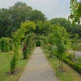 绿色archs在Chaalis修道院的玫瑰园里  库存照片