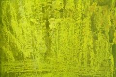 绿色grunge纹理 库存图片