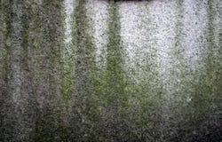绿色grunge 免版税图库摄影