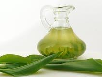 绿色herbsoil 库存照片