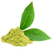 绿色matcha粉末茶 库存照片