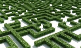 绿色maze1 免版税库存图片