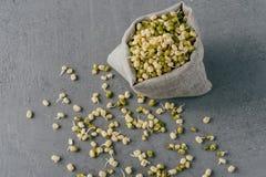 绿色orgnaic绿豆用在小大袋附近被涂的新芽,被隔绝在灰色背景 r 健康moong dal 库存照片