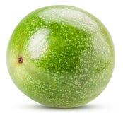 绿色Passionfruit 免版税图库摄影