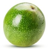 绿色Passionfruit 库存照片