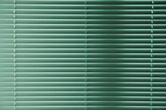 绿色windowblinds 库存图片