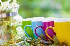 绿茶罐和五颜六色的杯子 库存图片