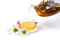 绿茶 免版税图库摄影