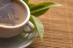 绿茶 库存照片