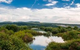 绿草包围的镇静湖 免版税库存照片
