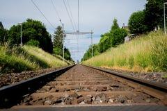 绿草围拢的平直的铁路 免版税库存图片
