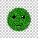 绿草圈子领域3D 面孔微笑 兴高采烈的象草的象,被隔绝的白色透明背景 概念许多生态的图象我的投资组合 库存照片