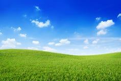 绿草小山和明白蓝天 免版税图库摄影
