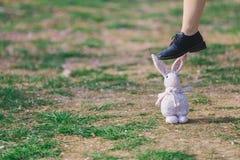 绿草有桃红色瓣和一只木偶兔子和一只脚在兔子 免版税库存图片