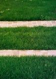 绿草有白色瓦片走道背景 免版税图库摄影