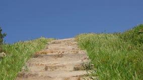 绿草木台阶和天空蔚蓝美丽的景色  影视素材