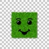 绿草正方形领域3D 面孔微笑 兴高采烈的象草的象,被隔绝的白色透明背景 概念许多生态的图象我的投资组合 免版税库存照片