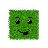 绿草正方形领域3D 面孔微笑 兴高采烈的象草的象,被隔绝的白色透明背景 概念许多生态的图象我的投资组合 库存图片