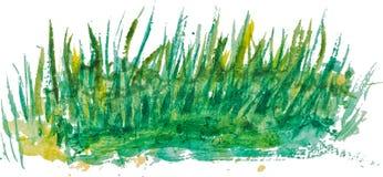 绿草水彩背景 库存图片