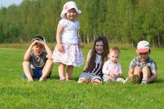 绿草的五个愉快的孩子在夏天调遣 图库摄影