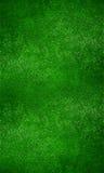 绿草背景 免版税库存照片
