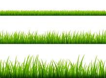 绿草草甸边界传染媒介样式 春天或夏天植物领域草坪 背景草查出的白色 向量例证