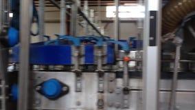绿豆的生产的运作的过程在罐头工厂的 洗涤在水中的成熟绿豆在保存前 股票录像