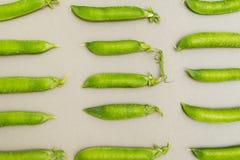 绿豆背景在荚的在灰色背景 免版税库存图片