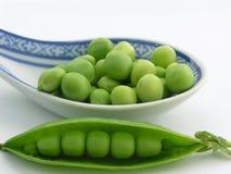 绿豆 免版税图库摄影
