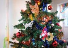 缅因戏耍浣熊的小猫 免版税图库摄影