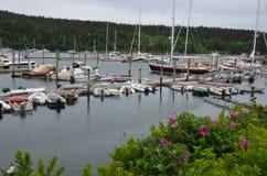 缅因海岸的小游艇船坞 免版税图库摄影