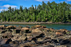 缅因的岩石海岸 免版税库存照片