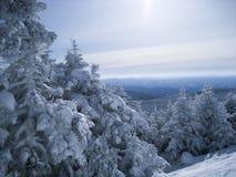 缅因wintersport 库存图片
