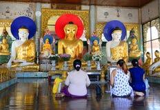 缅甸人民在Shwedagon塔祈祷在仰光 库存图片