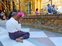 缅甸人民在Shwedagon塔祈祷在仰光 免版税库存照片