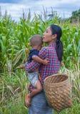 缅甸的缅甸农夫 免版税库存照片
