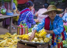 缅甸的菜卖主 库存照片
