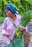 缅甸的菜卖主 免版税库存照片