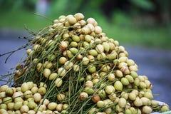 缅甸葡萄 免版税库存照片